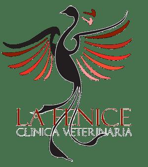Clinica La Fenice